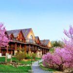 Explore Branson Hospitality Options