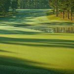 Mystic Creek Earns Top Ranking