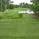 Area Owners Rank TPC Myrtle Beach  Course of the Year